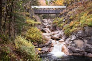 DSC_7466 Sentinal Pine Bridge#Franconia Notch copy